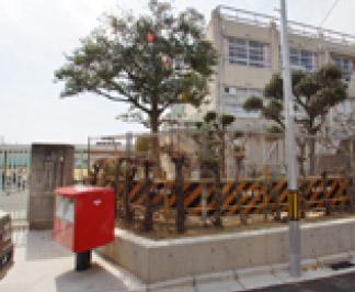 ●小阪小学校